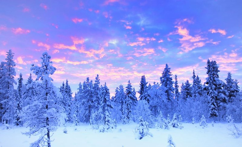Ten facts about Lapland that you may not have known