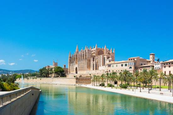majorca island spain cathedral with palm tree