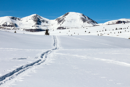 winter panorama near Andrew's lake near Silverton Colorado USA