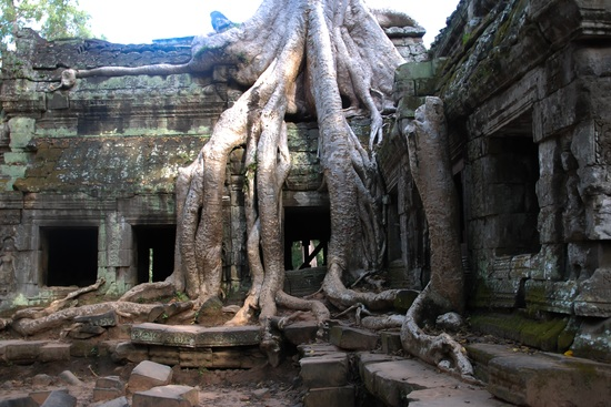 cambodia ancients structure